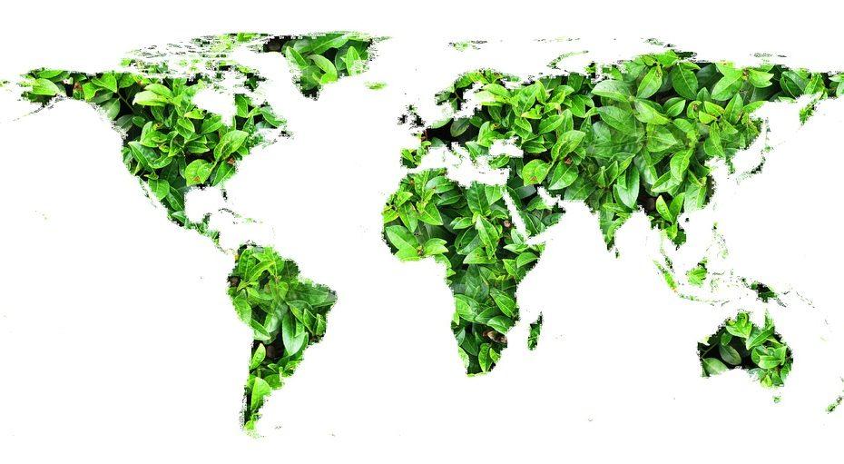 fare comunicazione ambientale